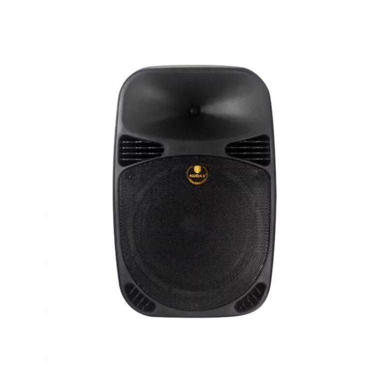 Audax PR-12V 12 POWERFUL Sound AC/DC Portable PA Speaker System (2 wireless handheld microphone)
